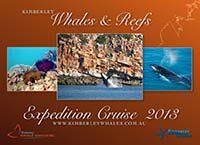 Kimberley Whale Watching's Whales & Reefs expedition cruise
